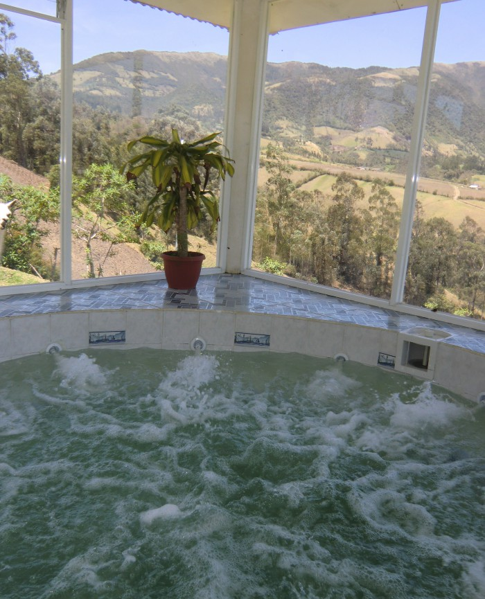 Our llama and jacuzzi at Hosteria Rose Cottage